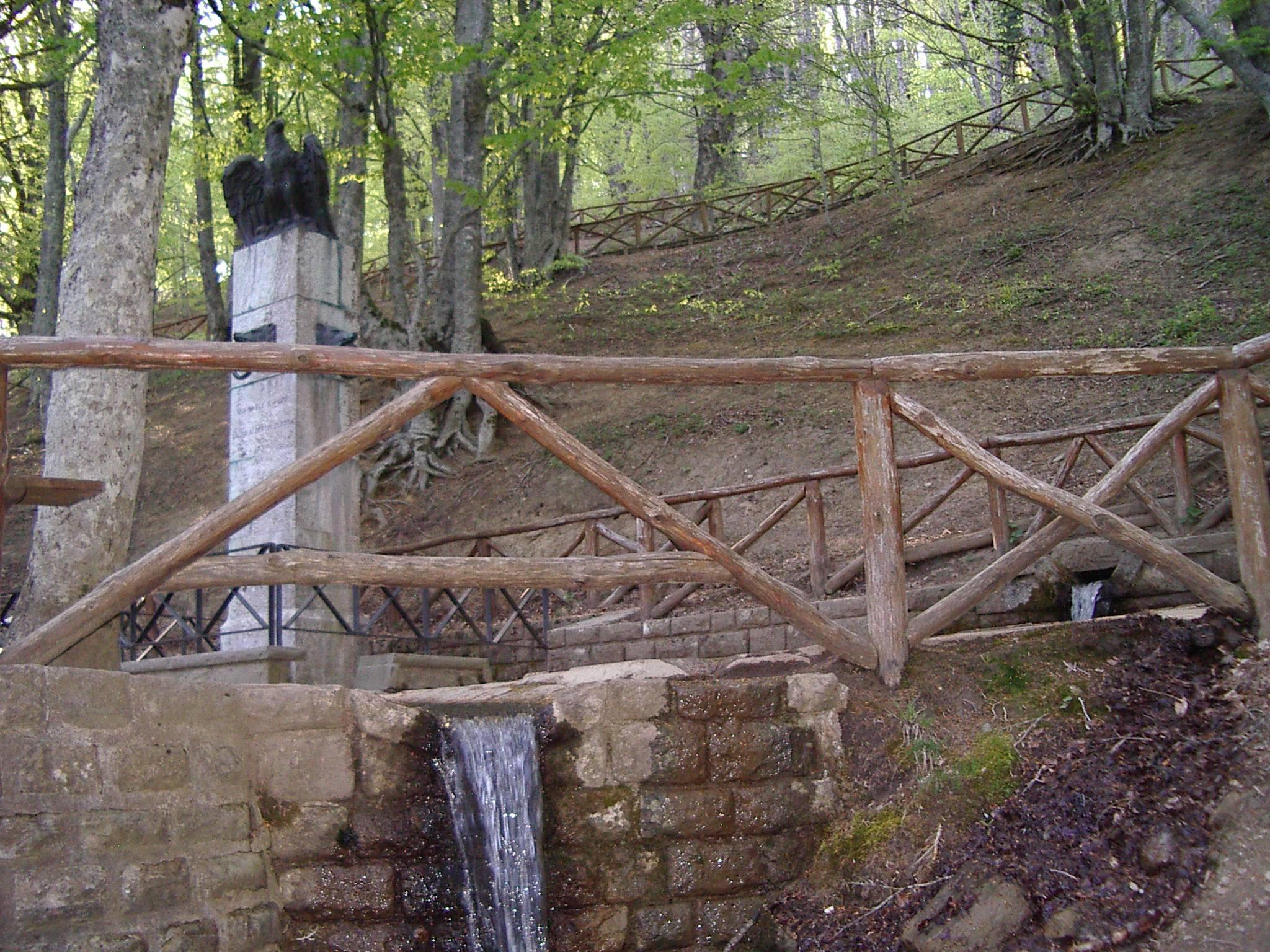 Sul monte Fumaiolo, dove nasce il fiume Tevere | Romagna da Vivere